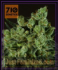 710 Genetics Old White Widow Feminized 5 Seeds